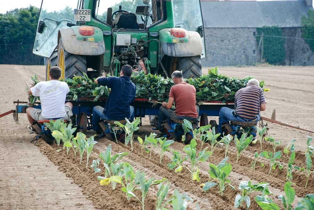 Guide pour évaluer la pénibilité dans l'agriculture